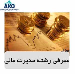 رشته ی مدیریت مالی